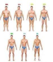 脂肪 22 体 女性 率