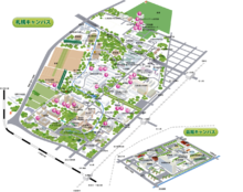北大校区地图
