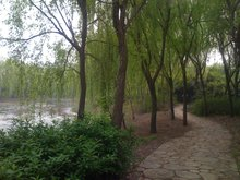 西南湖生态公园