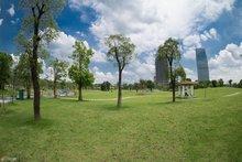 广州市儿童公园中央大草坪
