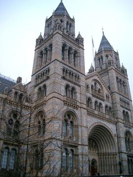 英国自然历史博物馆