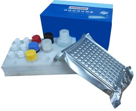 酶联免疫试剂盒