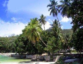 热带雨林气候