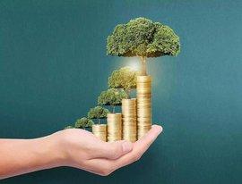 产业投资基金