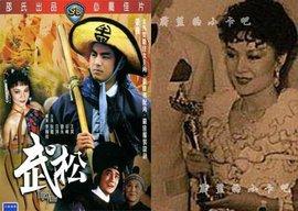 第19届台湾电影金马奖