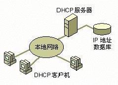 DHCP协议