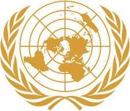 联合国宪章