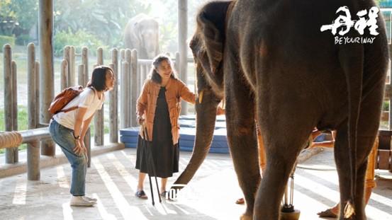 朱丹呼吁救助残疾大象聆听盲童演出,在感动中结束《丹程》之旅