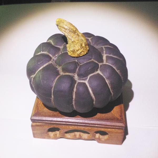 龟纹石产地在哪儿?