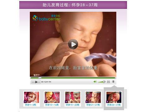 胎儿每月发育图_胎儿发育过程图_幼儿999