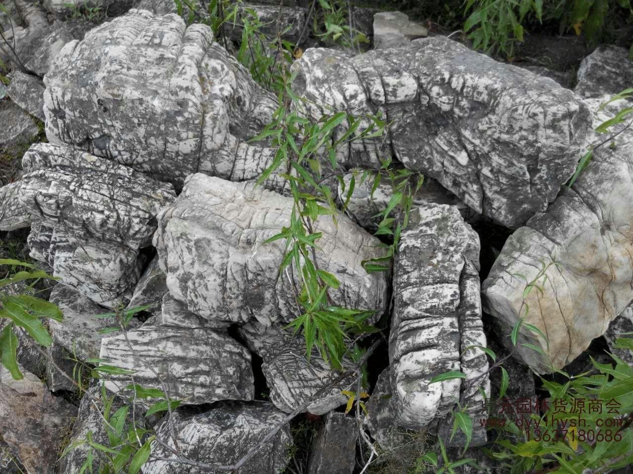 龟纹石形态特征是怎样的?